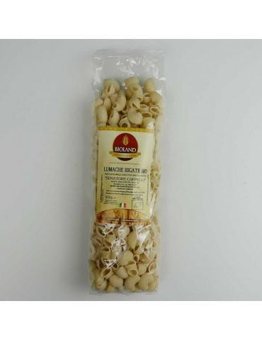 Lumache - Pasta Senatore Cappelli Trafilata al Bronzo 500g