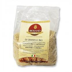 Le granelle - Pasta Integrale Senatore Cappelli Trafilata al Bronzo 500g - 20 pz